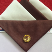 Cream and Brown Hankie With Brown Flap and Pin
